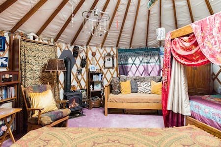 Unique Yurt Glamping in an Urban Oasis