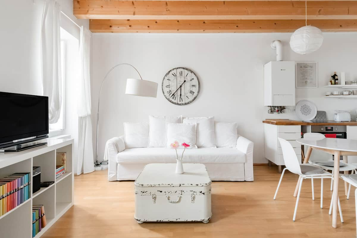 Scandinavian Style Studio Apartment