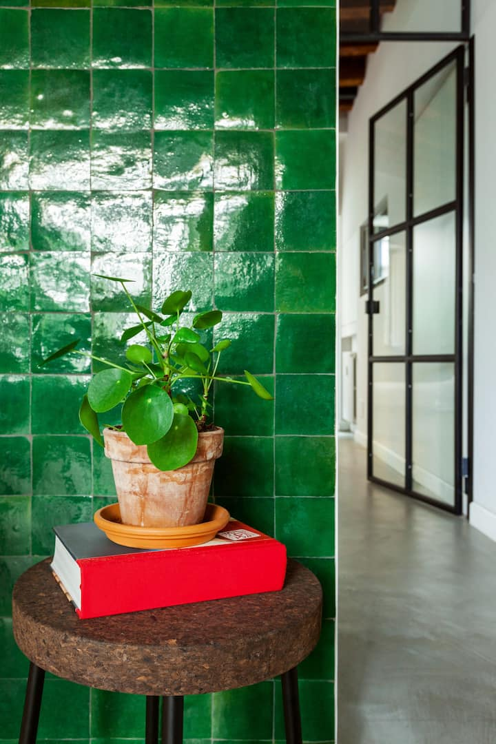 A small leafy houseplant in a terra-cotta planter sits on top of a thick, red-bound hardcover book on a cork stool. The stool is up against a green-tiled wall, and in the background around the corner is a polished cement-lined hallway leading through a wrought-iron framed glass door.