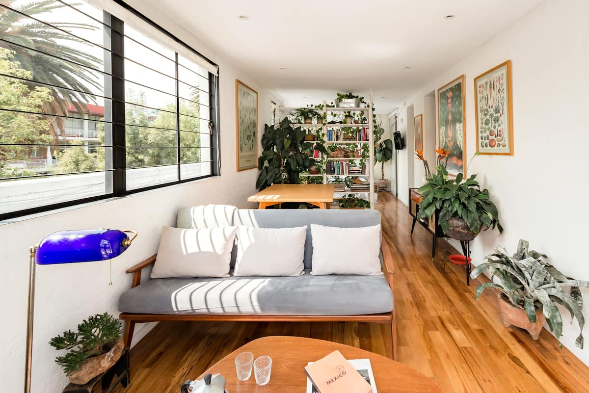 Plant-Lover's Sunny Rooftop Oasis in Hip Condesa