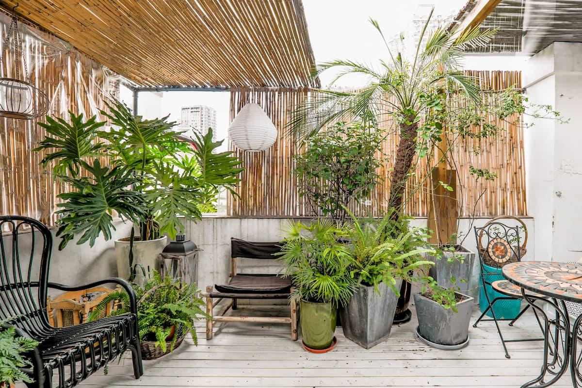 入住绿植遍布的老洋房,体验百年历史和地道上海生活