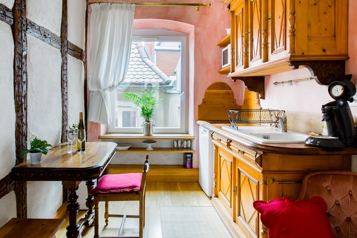 Take the Tourist Train from a Period Apartment in Colmar