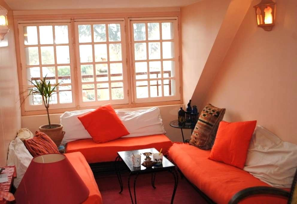 Amboise apartment on a island Loire - Amboise - Lägenhet