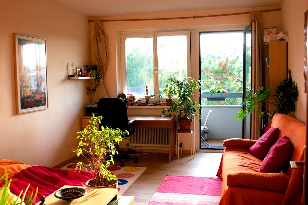 Nice and lovely flat near inner city - Klagenfurt am Wörthersee