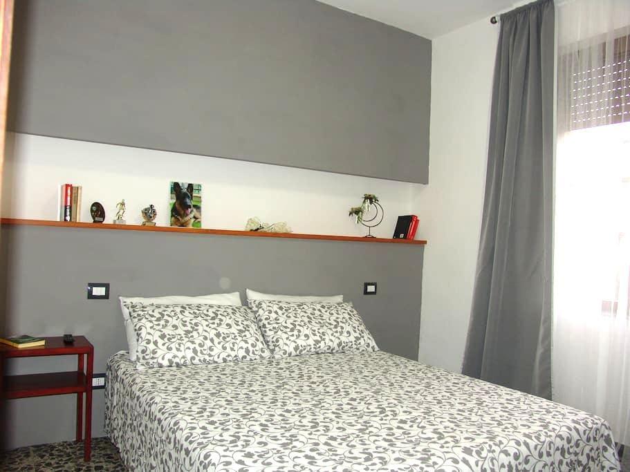 Double Room in B&B Myosotis - Pisa