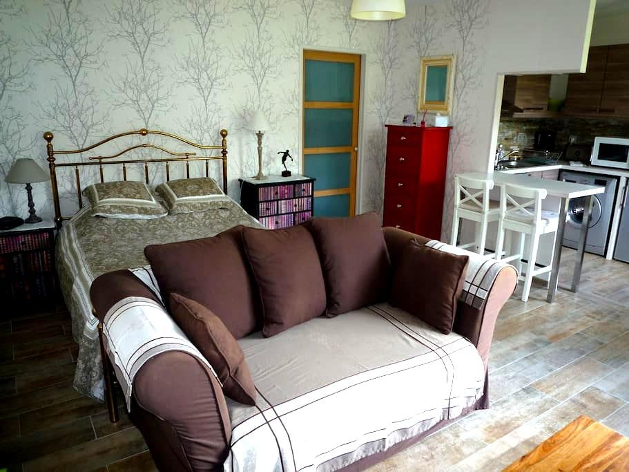 CHARMING STUDIO IN FONTAINEBLEAU 35 M2-4 km INSEAD - Avon - Apartment