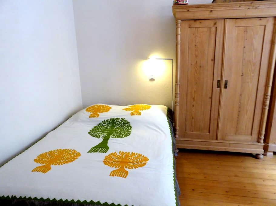 une chambre dans appartement hausmanien calme - Belfort