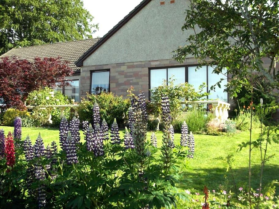 b&b close to Glamis Castle  - Glamis - Bed & Breakfast