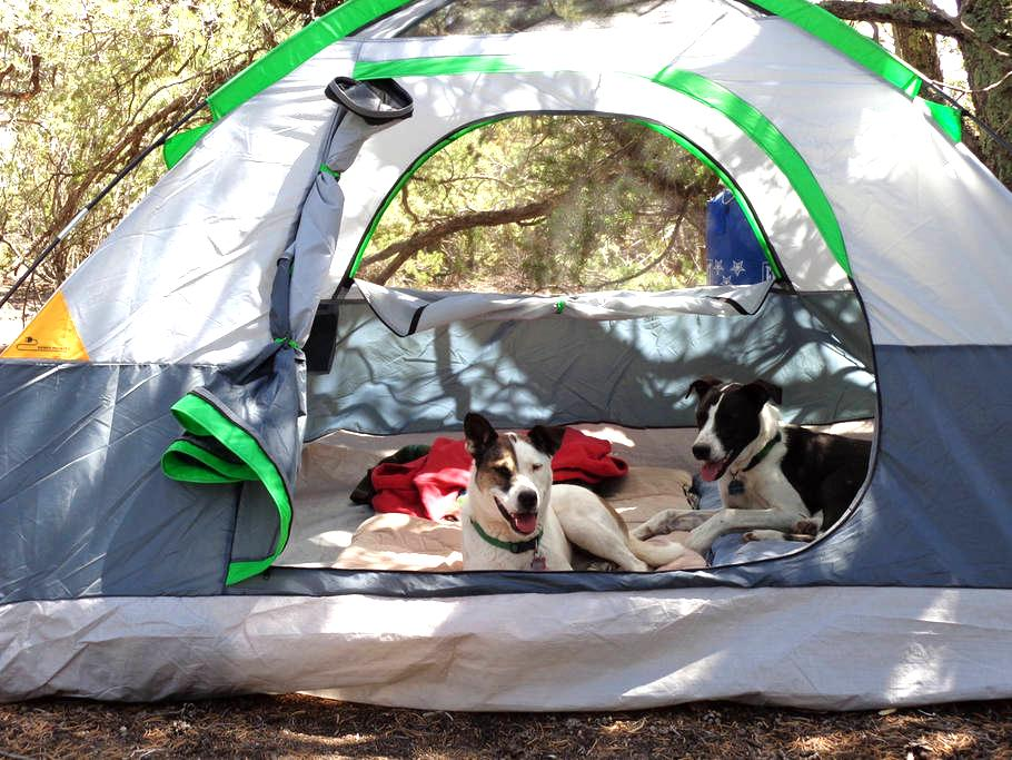 Campground near Madrid NM - Los Cerrillos