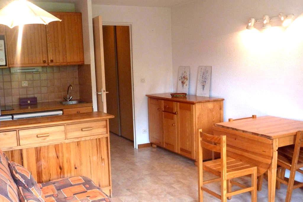 Très bel appartement en pleine nature - Vallouise