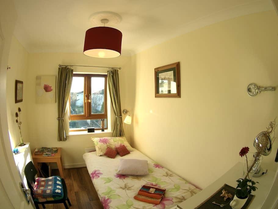 Warm, Cosy & Friendly Single room - Blanchardstown - Casa