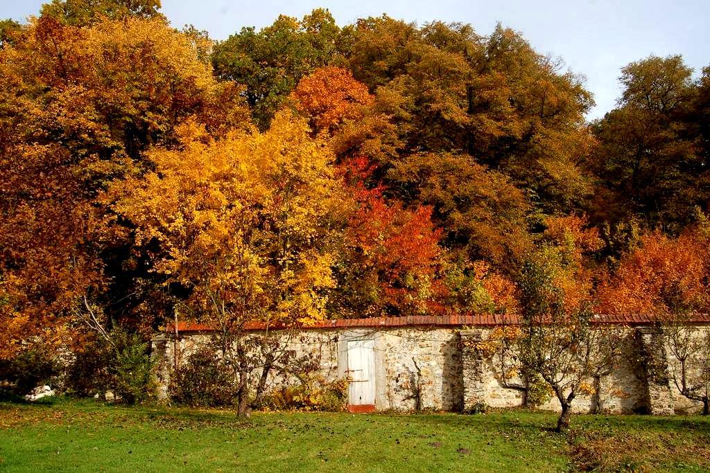 Studio au parc historique de Méridon à Chevreuse - Chevreuse - Wohnung