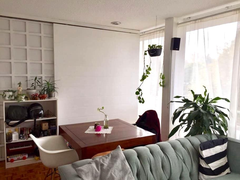 Lovely apartment near to Condesa with balcony - เม็กซิโกซิตี้