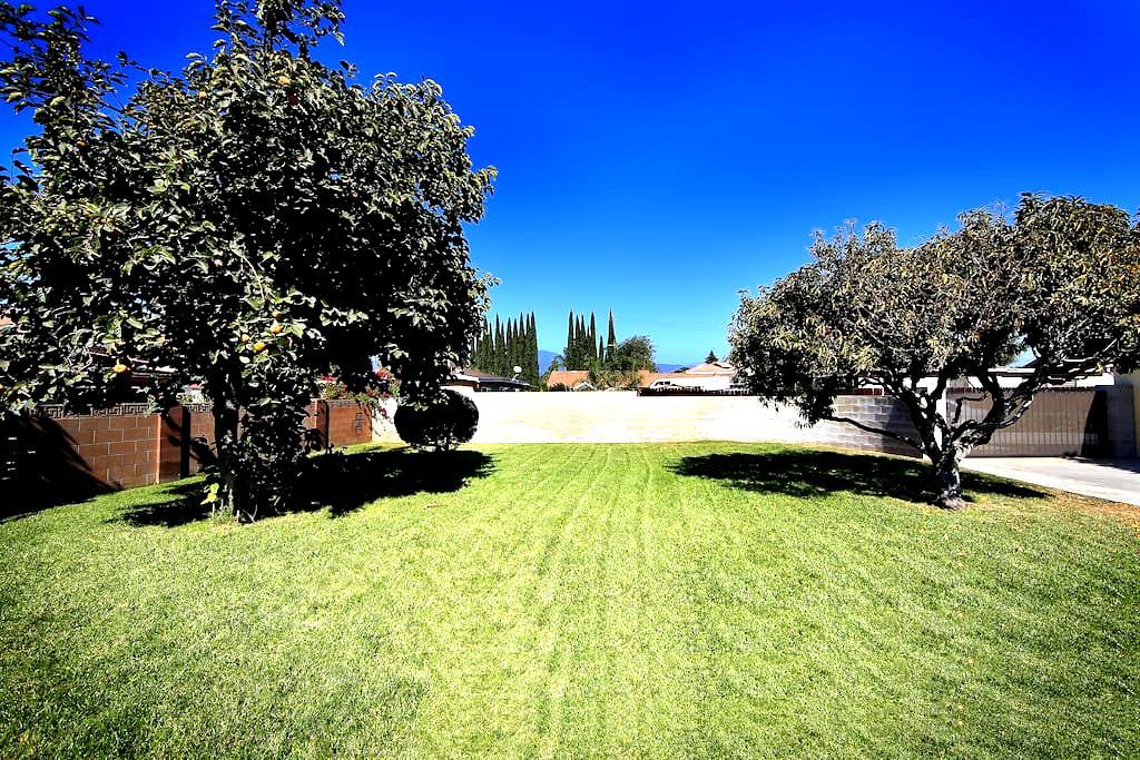 Mini-Single House Huge Private Yard - El Monte - Hus