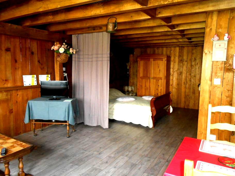 Gîte des marmottes - Chouzé-sur-Loire - Apartament