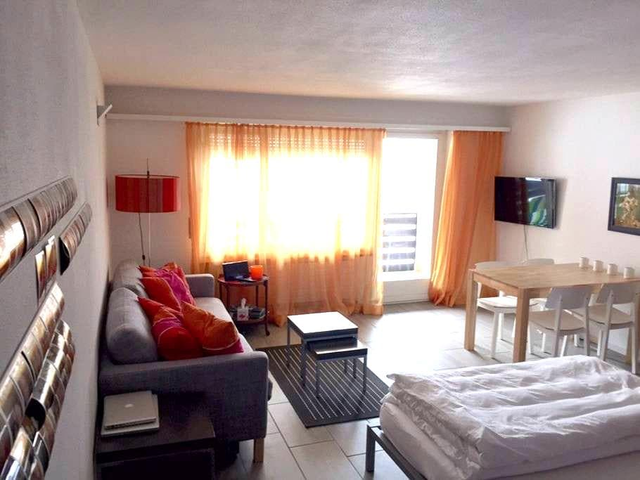 1 room studio in Fiesch - Fiesch - Apartament