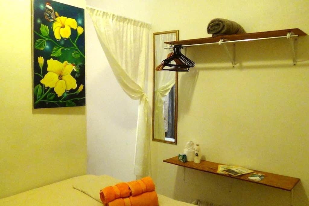 Earth Room at Hacienda Tropical Guest House - Belmopan - Daire