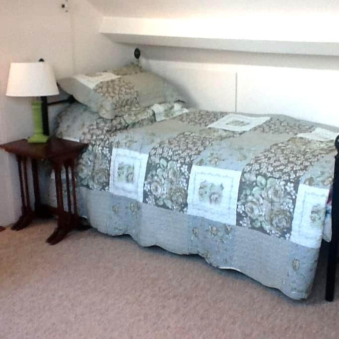 Twin Room with breakfast in Victorian House - Dublin - House