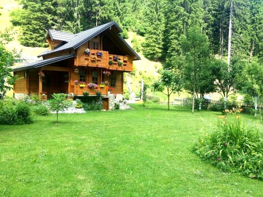 Wooden house 5 km from Rozaje - Rozaje