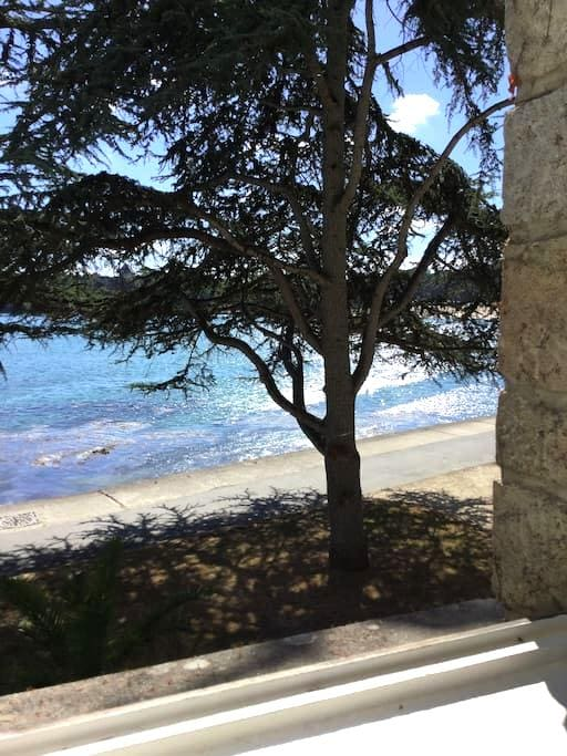 Seaside appartment - Dinard - Apartment