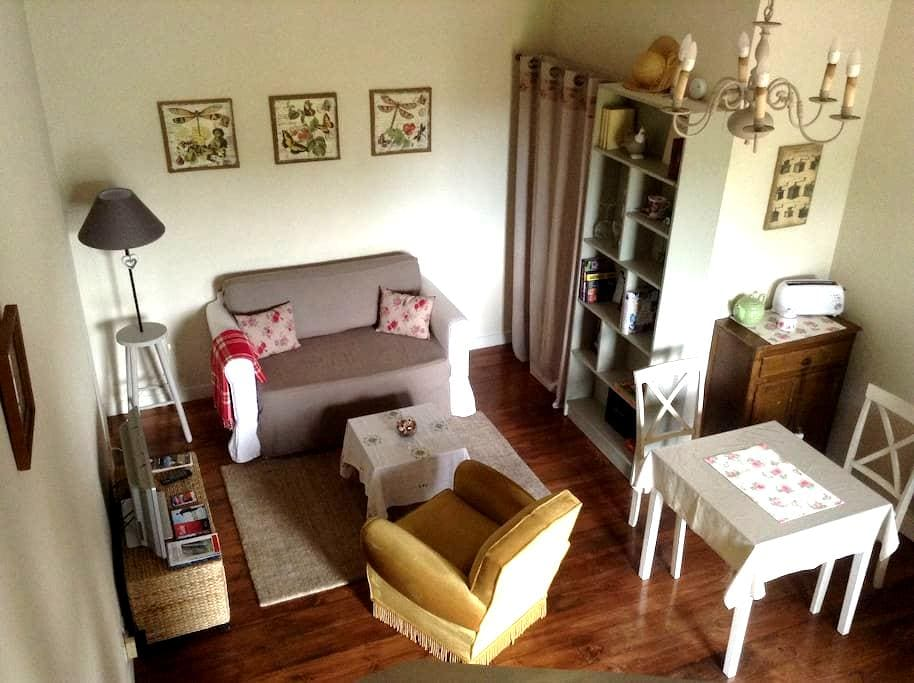 Private accommodation in the countr - Saint-Laurent-de-Gosse - Appartement