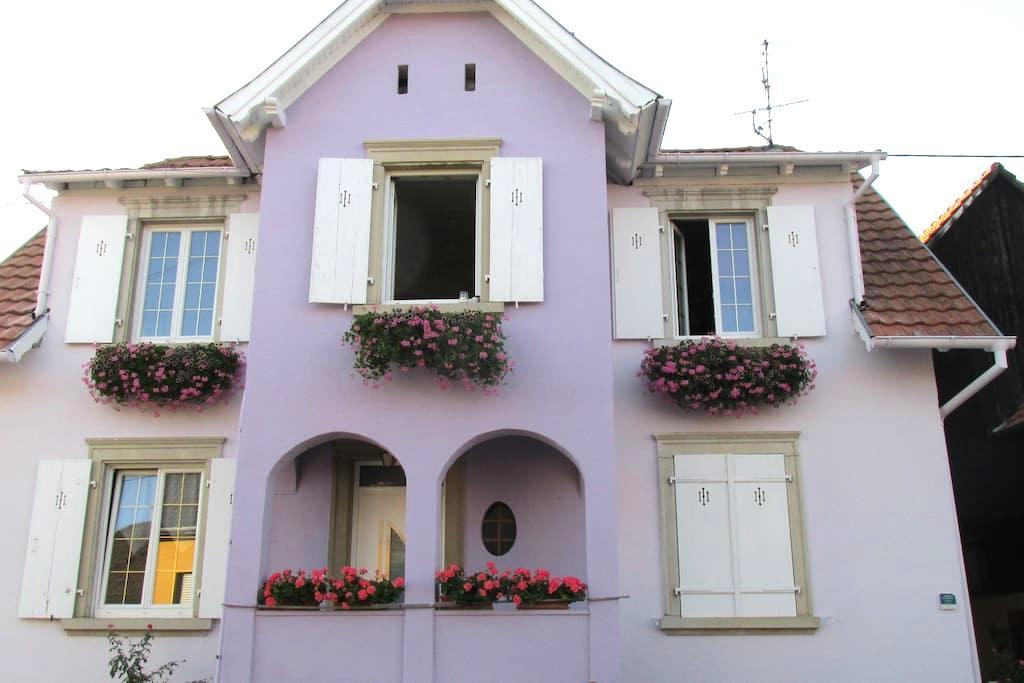 Bel appartement classé *** - Uttenheim - Apartmen