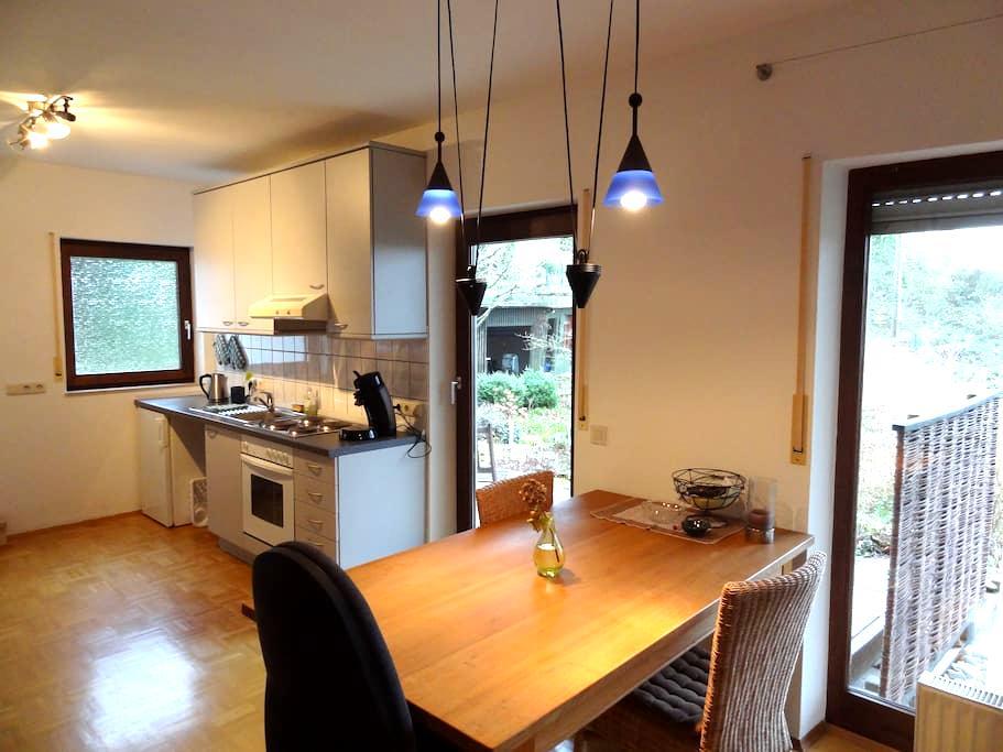 modern furnished 2 room condo - Wiesbaden - Appartement