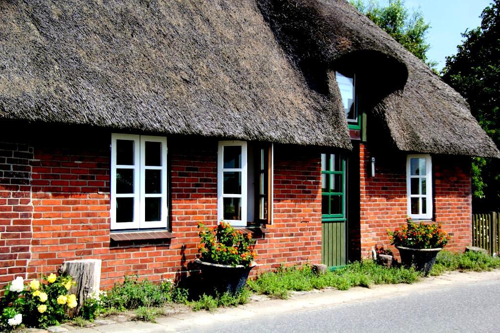 Reetdachhaus auf der Insel Pellworm - Pellworm - House