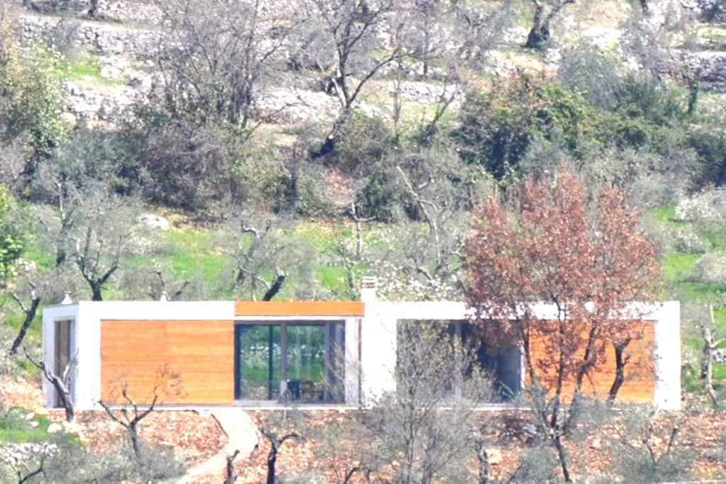 Villa tra gli ulivi a Sonnino - Sonnino - Villa