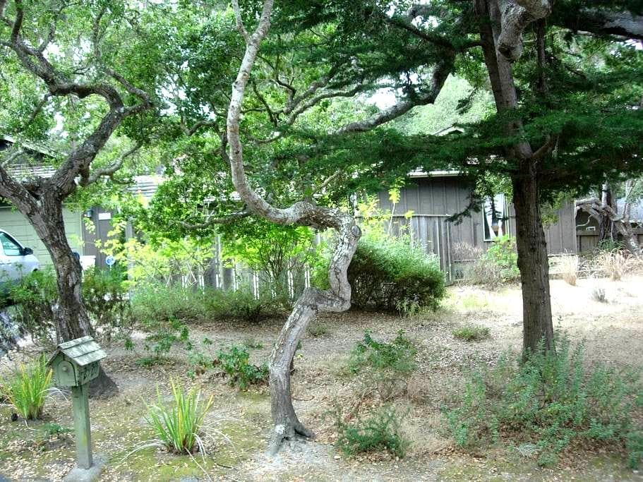 Pebble Beach Nature's Beauty & Tranquility - Del Monte Forest - Rumah
