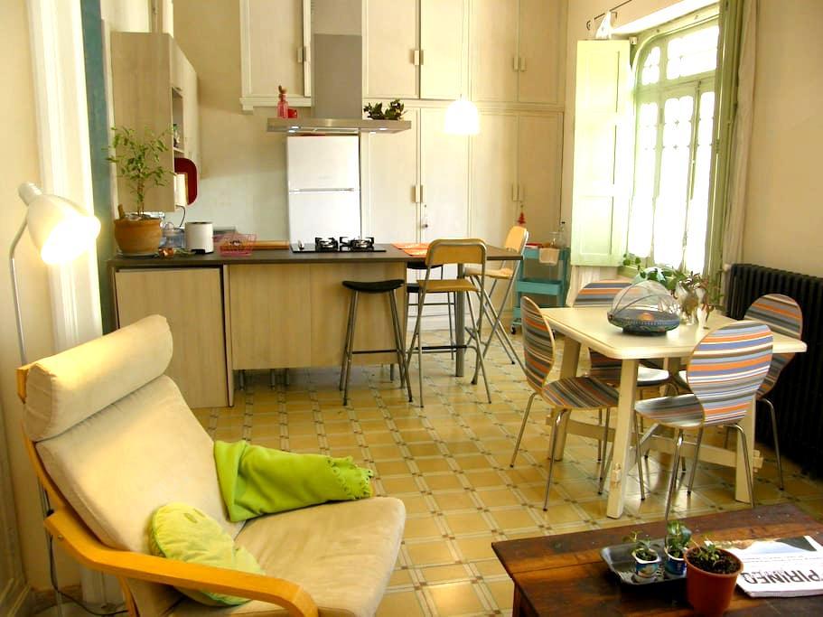 Amplio loft con vistas a Peña Oroel en Jaca - Jaca - Apartament