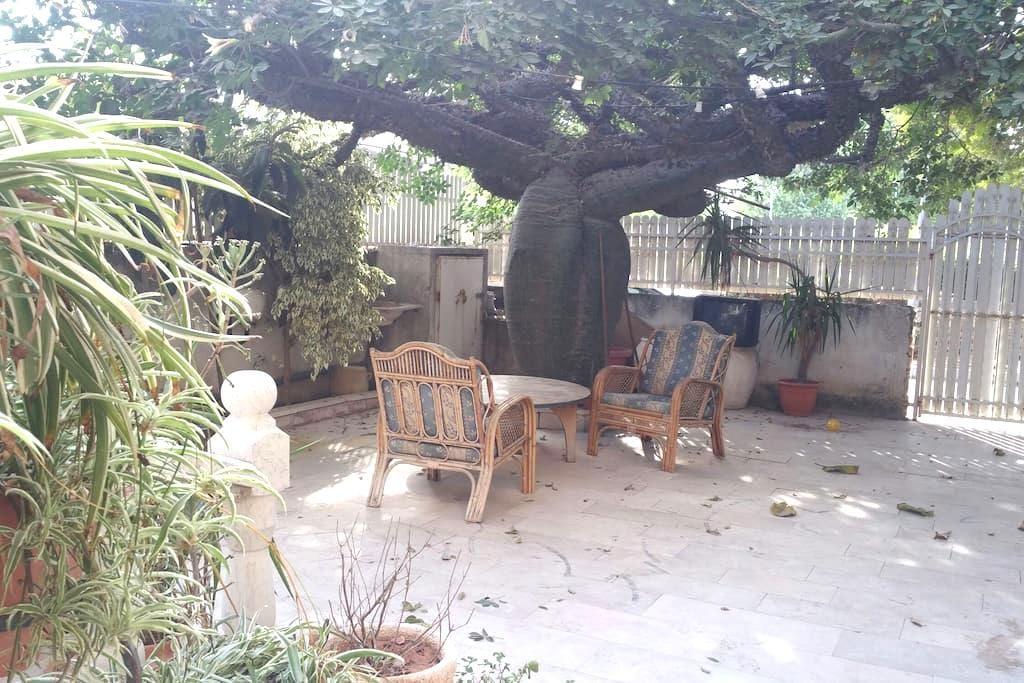 Cozy in Ramla City ;) - Ramla - House
