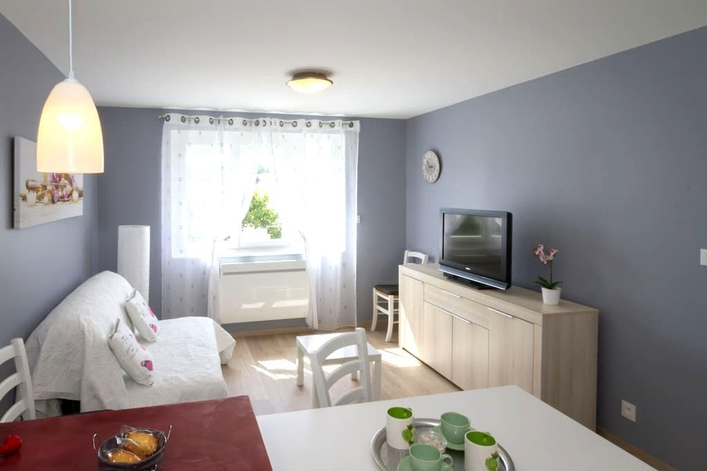 APPARTEMENT RENOVE A RODEZ PROCHE DU CENTRE VILLE - Rodez - Appartement