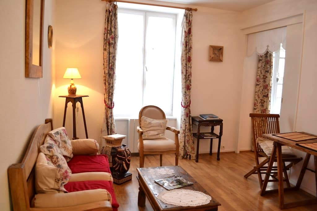 Cosy appartment in medieval town - Le Puy - Bed & Breakfast