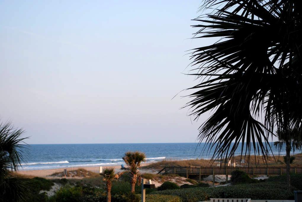 Modern One Bedroom Ocean Front Condo on Amelia - Fernandina Beach
