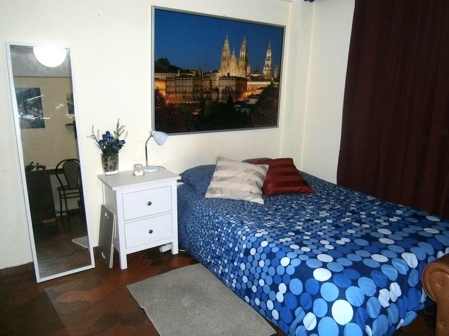 Estudio acogedor a 5 minutos del centro histórico - Santiago de Compostela - Apartament