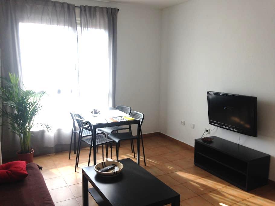 Apartamento en Murcia - Murcia - Apartment