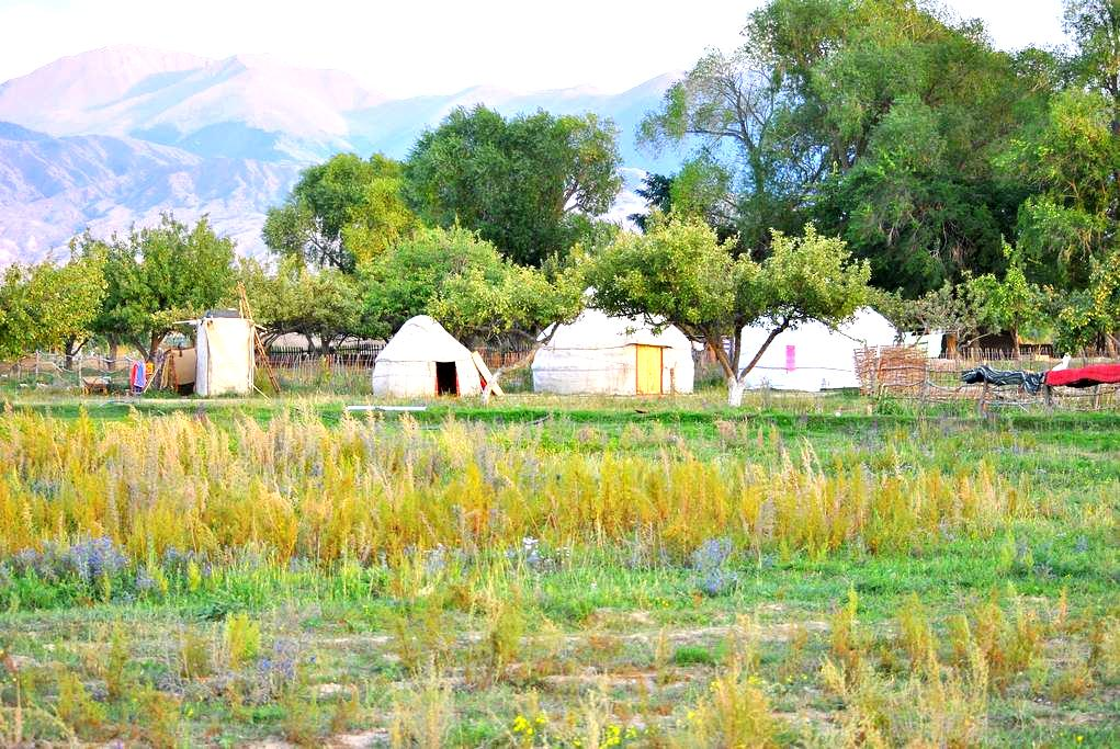 Holiday in Yurt Camp by Issyk Kul - Tong