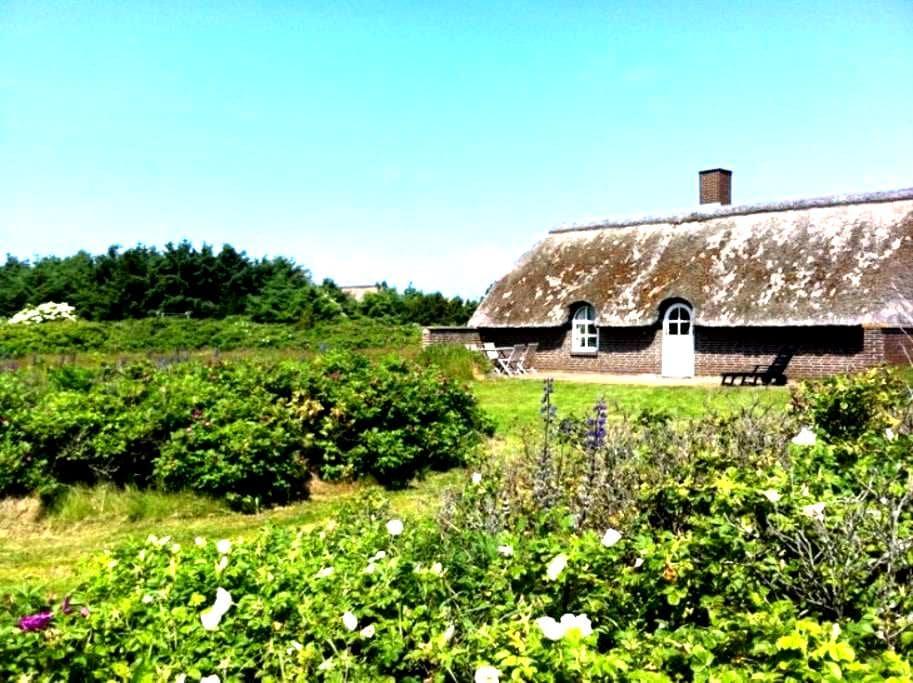 Kun 400m fra det brusende Vesterhav - Ulfborg - Houten huisje
