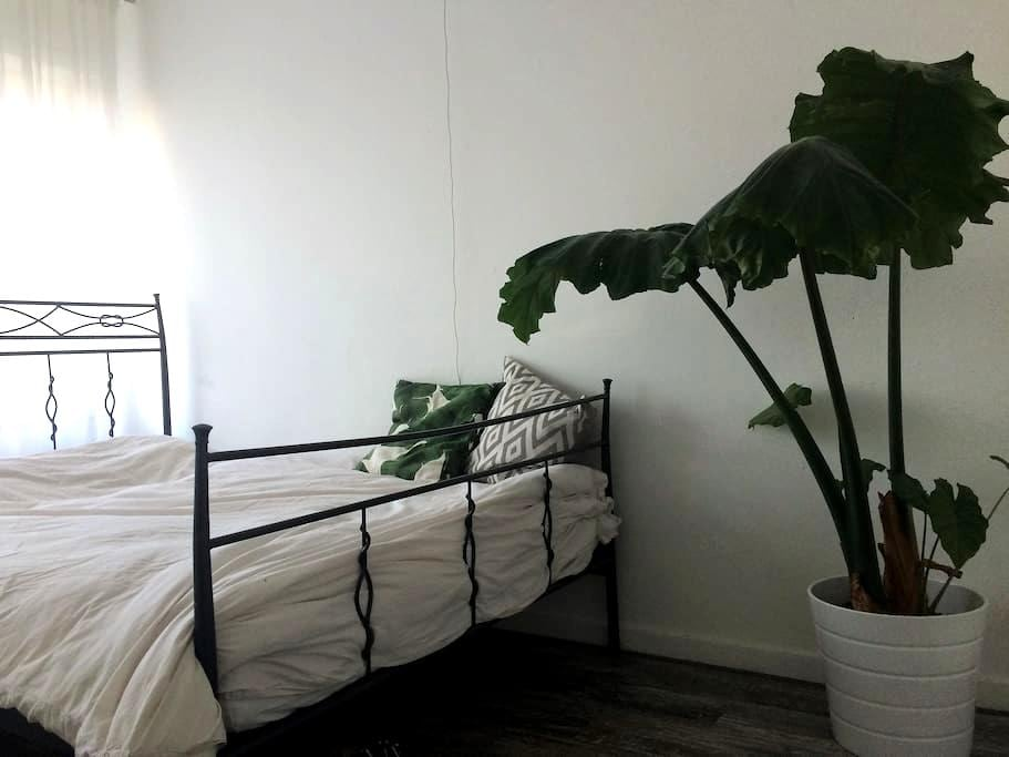 Eurosonic Special: Double room nearby city centre - Groningen