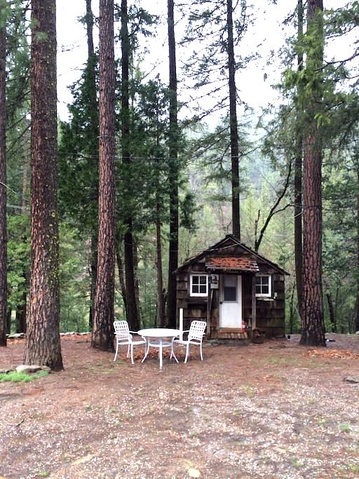 Cute Rustic Cabin in the Woods!  - paxton - 小木屋