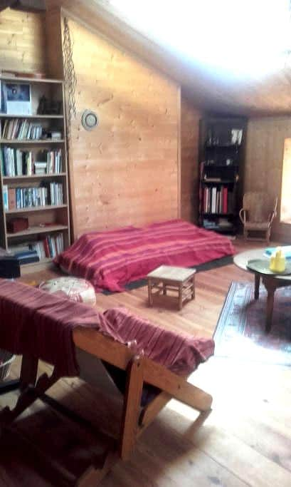 Studio équipé sous les toits 60m2 - Casteljaloux - Huis