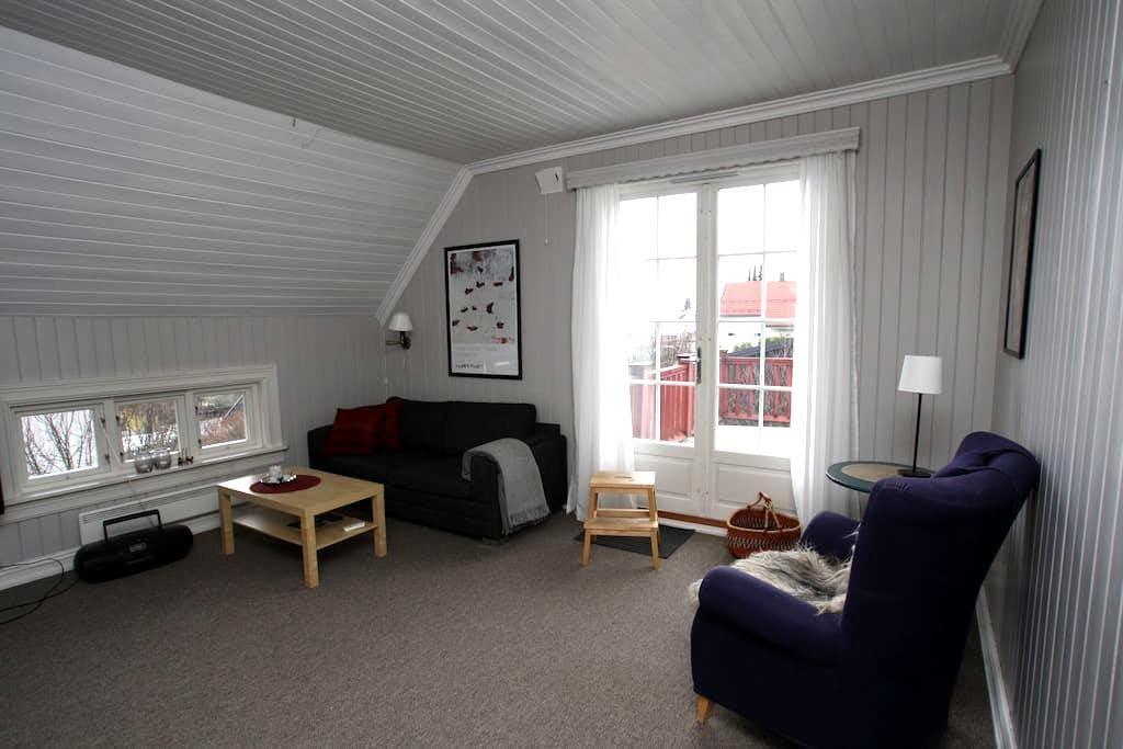 Sjarmerende leilighet  med utsikt - Hamar - Apartament