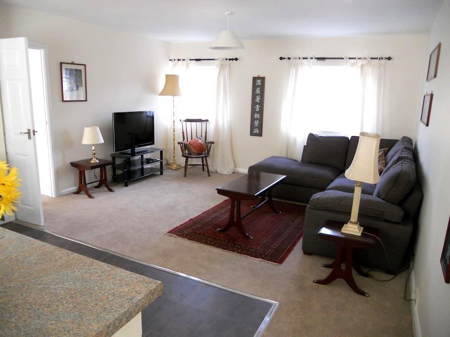 Spacious Sunny Apartment  - Maidenhead - Apartament