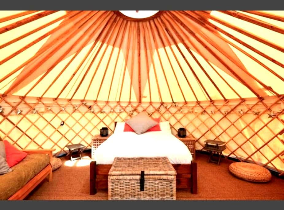 Luxury Yurt at Hale Farm Campsite - Chiddingly - Yourte