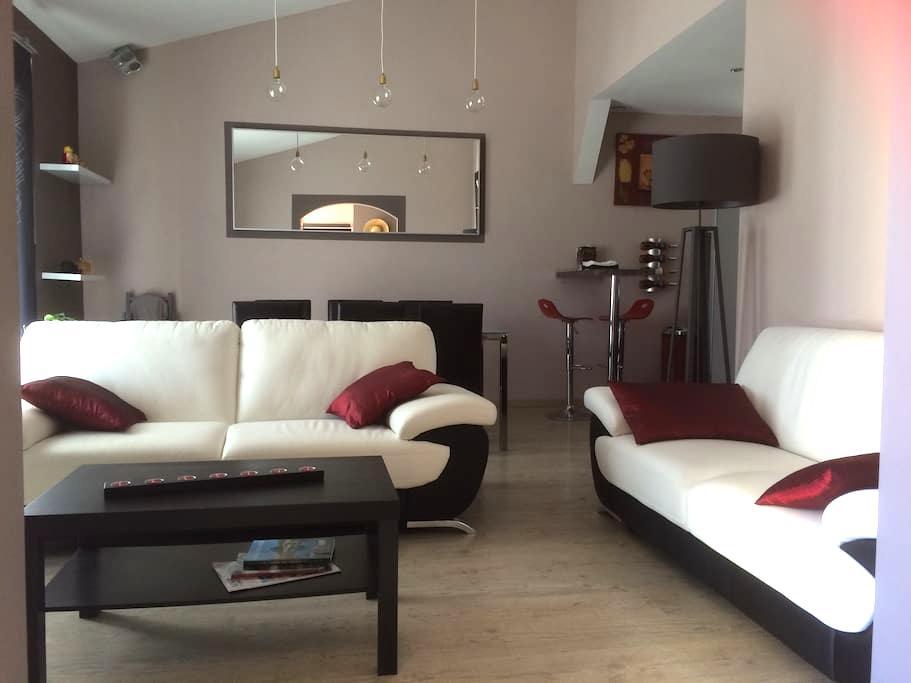 Villa avec SPA prox Cité & aéroport - Arzens - Villa