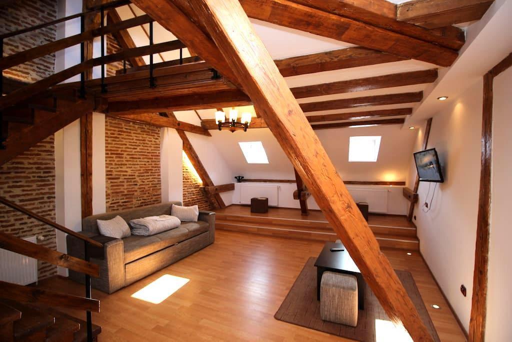 Superb Loft Studio in Main Square - 브라쇼브(Brașov) - 아파트