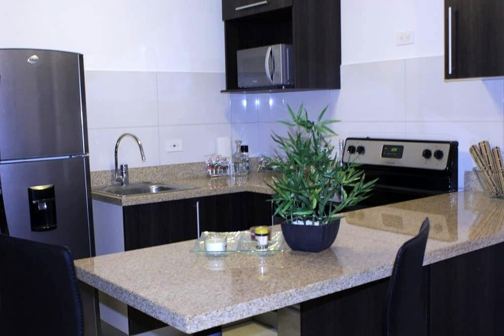 Elegant Apt near Airport,Downtown, and great views - San José
