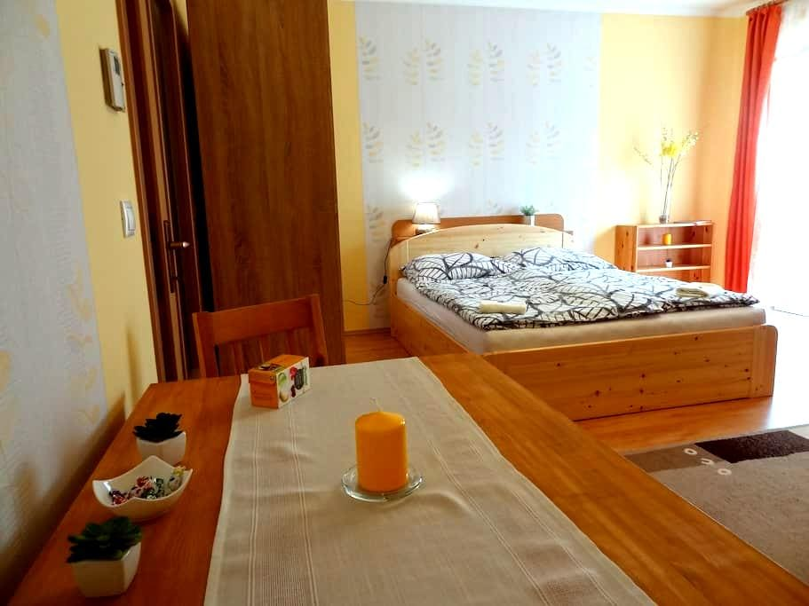 Dia Apartman - Cozy apartment in downtown - Miskolc - Apartamento