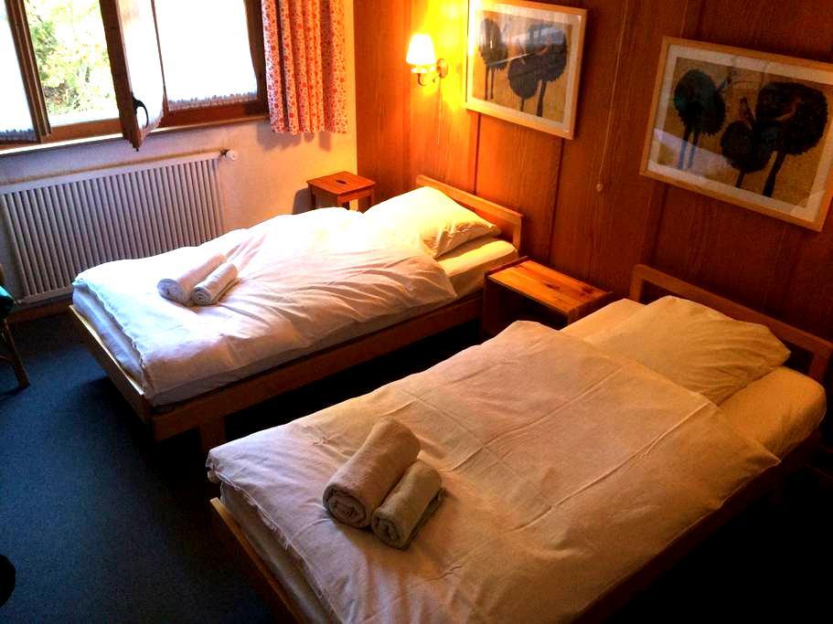 Chambre privée avec 2 lits, entrée indépendante - Bagnes - Lejlighed